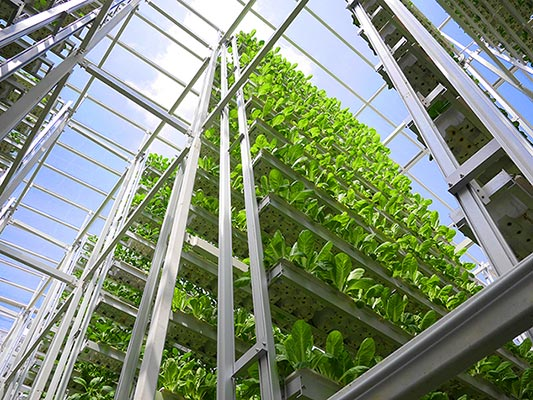 Skygreens-Vertical-Farm1